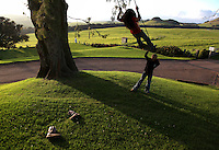 "Kamehana Tachera, 11, pushes her sister, Nahe, 9, on a swing at Kahua Ranch in North Kohala, Hawaii, where their father, Wayne, is employed as a cowboy.  The girls' great-grandfather, grandfather and father are or were all cowboys and they live in ""cowboy housing"" on the ranch.  The girls learned to ride horses as toddlers and have grown up with the ranch as their playground. ""It's beautiful up here.  Not many children get to see this lifestyle,"" says Kamehana."