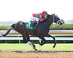 Protonico and jockey Javier Castellano win the Ben Ali at Keeneland for owner Sumaya U.S. Stable and trainer Todd Pletcher.