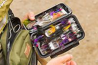 Colorful flies used when fly fishing, Katmai National Park, southwest, Alaska.