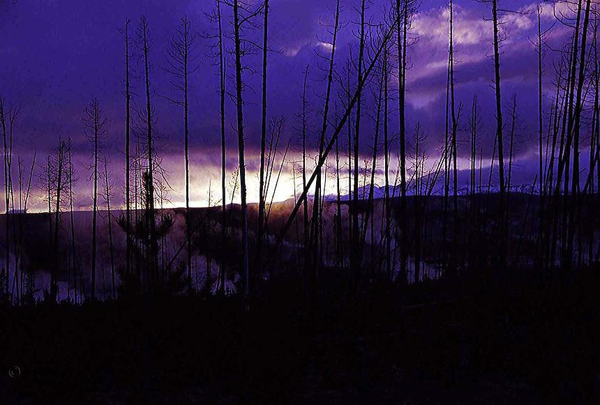 Sunset over Norris Geyser Basin, Yellowstone.