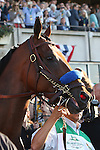June 6, 2015: American Pharoah heads to the post parade. American Pharoah, Victor Espinoza up, wins the 147th running of the Grade I  Belmont Stakes and with it the Triple Crown at Belmont Park, Elmont, NY.  Joan Fairman Kanes/ESW/CSM