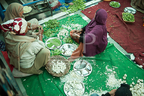 Amritsar, Punjab, India.  The Golden Temple - Harmandir Sahib; three women sit in the Langar kitchen preparing food, shelling peas, peeling garlic.