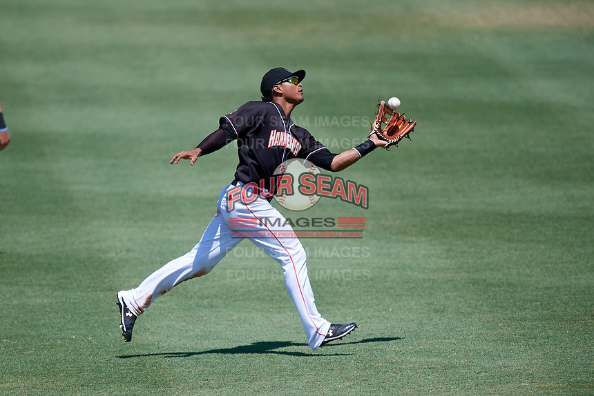Jupiter Hammerheads left fielder Jhonny Santos (30) catches a fly ball during a game against the Palm Beach Cardinals on August 5, 2018 at Roger Dean Chevrolet Stadium in Jupiter, Florida.  Jupiter defeated Palm Beach 3-0.  (Mike Janes/Four Seam Images)