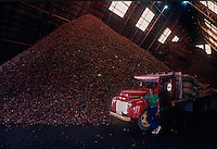 Coconut chips stockpile production for coconut oil, Philippines