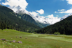 Austria, Tyrol, Innsbruck County, at rear Luesens Valley with Stubai Alps and glacier Luesener Ferner | Oesterreich, Tirol, Innsbrucker Land, im hinteren Luesenstal mit Stubaier Alpen und dem Gletscher Luesener Ferner