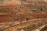 Judea, Gush Etzion. Traditional agriculture fields as seen from Efrata