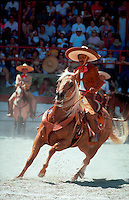 A Mexican cowboy (gaucho) on horseback swings his lasso at the Charros Rodeo Fiesta Event. San Antonio, Texas.