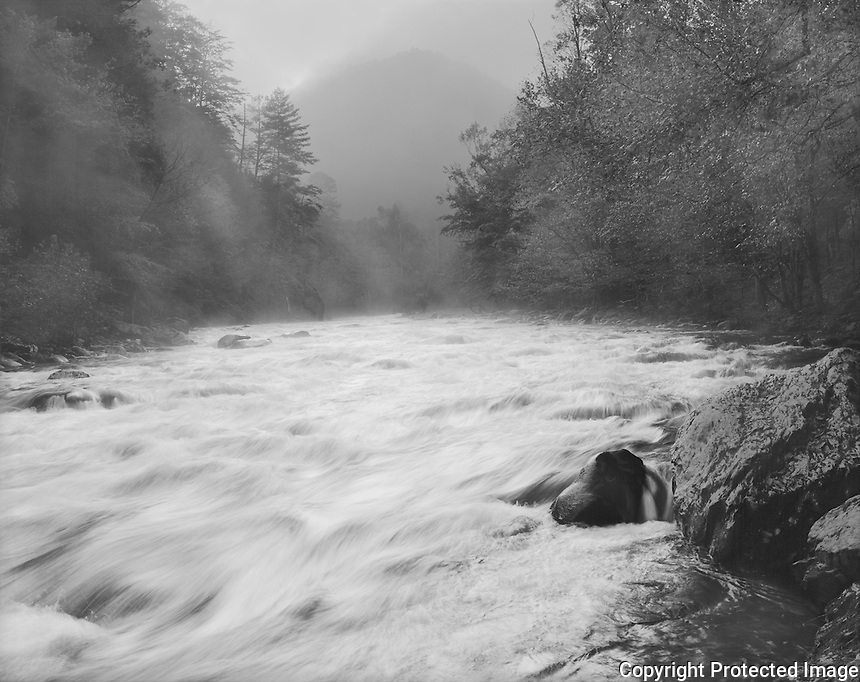 """""""Little River At The Y"""" Great Smoky Mountains National Park, Tennessee<br /> <br /> This picture was recorded shortly after daybreak near the """"Y"""" just inside the Great Smoky Mountains National Park south of Townsend. The camera faced the sun as it was rising behind the mountain at the top center of the image so the scene contrast was quite large. Negative development time was decreased substantially to reduce image contrast. I selected a shutter speed to blur the water enough to provide a feeling of movement but still capture the water's flow patterns. The impression of moving water is good and the feeling of downhill movement is strong, especially in the lower left quadrant of the image. The mist rising from the river adds to the early morning mood of the black and white photo."""