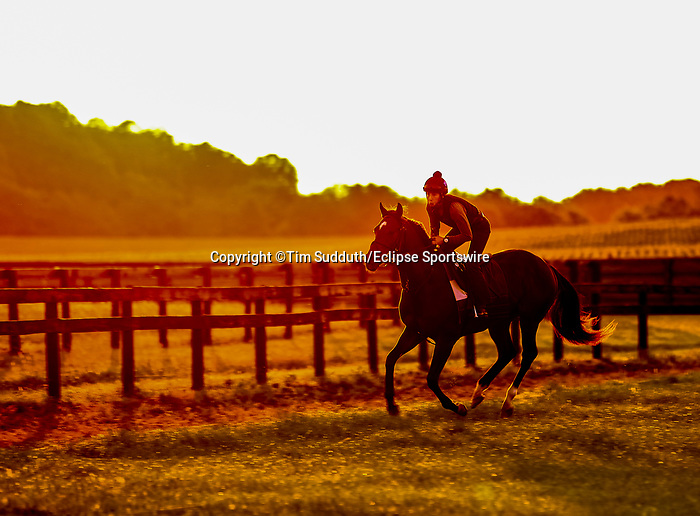 November 8, 2021: Scenes from the Eclipse Sportswire Photo Workshop at Kentucky Downs in Franklin, Kentucky, photo by Tim Sudduth/Eclipse Sportswire Photo Workshop