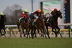 FUCHU,JAPAN-FEBRUARY 18: Albert #12,ridden by Ryan Moore,wins the Diamond Stakes at Tokyo Racecourse on February 18,2017 in Fuchu,Tokyo,Japan (Photo by Kaz Ishida/Eclipse Sportswire/Getty Images)