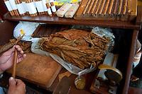 Man rolling cigars in cigar factory.