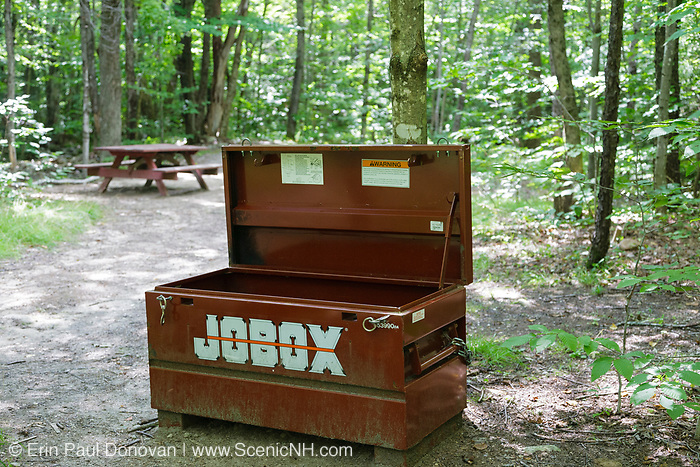 Bear box at established campsite along the Holt Trail in Orange, New Hampshire USA. This trail leads to the summit of Cardigan Mountain.