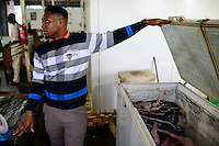 NIGERIA, Ibadan, Frozen Food, selling of illegal imported chicken meat from Europe in a frozen food shop, the meat is often smuggled from Benin, chicken from UK and France / NIGERIA, Oyo State, Ibadan, Frozen Food, Verkauf von illegal importiertem Huehnerfleisch aus der EU z.B. UK und Frankreich in einem TK Laden