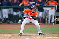 John La Prise (2) of the Virginia Cavaliers lays down a bunt against the Seton Hall Pirates at The Ripken Experience on February 28, 2015 in Myrtle Beach, South Carolina.  The Cavaliers defeated the Pirates 4-1.  (Brian Westerholt/Four Seam Images)
