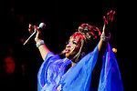 ENTERTAINMENT - Tribute To La Guarachera De Cuba The Queen Celia Cruz