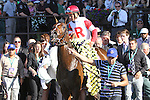 June 7, 2014: Real Solution with Javier Castellano win the 113th running of the Grade I Knob Creek Manhattan Stakes for 4-year olds & up, going 1 1/4 mile on the turf at Belmont Park. Trainer: Chad Brown. Owner: Kenneth & Sarah Ramse . Sue Kawczynski/ESW/CSM
