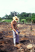 Juruena, Brazil. Slash - burn agriculture; recently cleared land after the trees have been burnt; settler planting manioc.  cassava manihot esculenta mandioca