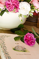 Detail of a still life of a bowl of freshly picked roses and a book about roses
