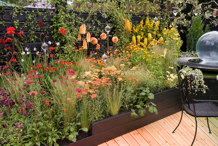 Hot color themed perennial garden in red, orange, yellow