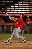 Los Angeles Angels outfielder Brendon Sanger (19) during a Minor League Spring Training game against the Milwaukee Brewers at Tempe Diablo Stadium on March 29, 2018 in Tempe, Arizona. (Zachary Lucy/Four Seam Images)