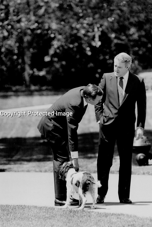 U.S. President George Bush pats his dog Millie as he and Brian Mulroney chat on the White House lawn.<br /> <br /> Photo : Boris Spremo - Toronto Star archives - AQP