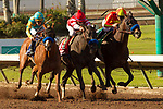 CYPRESS, CA  DECEMBER 9: #3 Solomini, ridden by Flavien Prat, #1 Instilled Regard, ridden by Drayden Van Dyke, and #5 McKinzie, ridden by Mike Smith, in the stretch of the Los Alamitos Cash Call Futurity (Grade l) on December 9, 2017, at Los Alamitos Race Course in Cypress, CA. (Photo by Casey Phillips/ Eclipse Sportswire/ Getty Images)