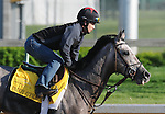 28 April 10:  Paddy O'Prado works out at Churchill Downs in Louisville, Kentucky