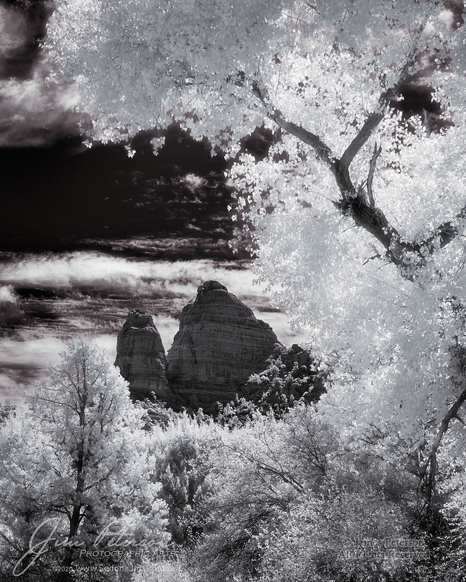 Twin Buttes above Turkey Creek (Infrared).  A towering cottonwood and a smaller piñon pine frame this rugged pair of sandstone monuments in the Coconino National Forest south of Sedona, Arizona.<br /> <br /> Image ©2020 James D. Peterson