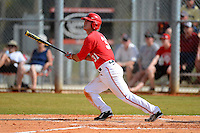 Ohio State Buckeyes outfielder Tim Wetzel #31 at bat during a game against the South Dakota State Jackrabbits at North Charlotte Regional Park on February 23, 2013 in Port Charlotte, Florida.  Ohio State defeated South Dakota State 5-2.  (Mike Janes/Four Seam Images)