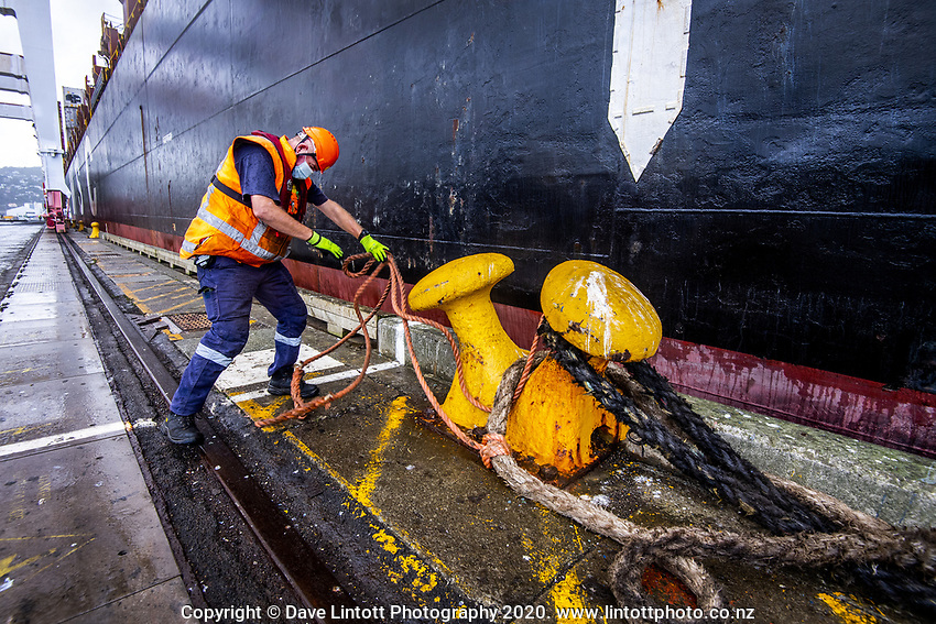 Brian Singleton ties off the MSC Banu container ship at CentrePort  in Wellington, New Zealand on Saturday, 18 April 2020. Photo: Dave Lintott / lintottphoto.co.nz