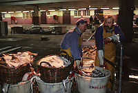 """Europe/France/Bretagne/29/Finistère/Le Guilvinec; Retour du pêche du chalutier """"Samouraï"""" - Déchargement des bateaux sur le port [Non destiné à un usage publicitaire - Not intended for an advertising use]"""
