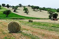 ITALY Tuscany, hay pressing in Maremma / ITALIEN Toskana, Ballenpresse, Heu pressen in der Maremma