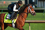 LOUISVILLE, KY - APRIL 28: Audible, trained by Todd Pletcher, exercises in preparation for the Kentucky Derby at Churchill Downs on April 28, 2018 in Louisville, Kentucky. (Photo by Eric Patterson/Eclipse Sportswire/Getty Images)