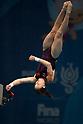 Diving: 17th FINA World Championships 2017 Budapest