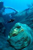 scuba diver in a freshwater river, Verzasca valley, Ticino, Switzerland