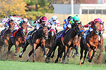 November 3, 2018: The field heads around the fourth turn in the Breeders' Cup Mile on Breeders' Cup World Championship Saturday at Churchill Downs on November 3, 2018 in Louisville, Kentucky. Wendy Wooley/Eclipse Sportswire/CSM