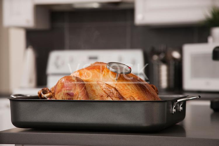 USA, Illinois, Metamora, Turkey in baking tray