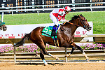 STANTON, DE - JULY 15:  Songbird #5, ridden by Mike Smith, wins the Delaware Handicap at Delaware Park on July 15, 2017 in Stanton, Delaware (Photo by Sue Kawczynski/Eclipse Sportswire/Getty Images)