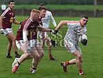 Louth V Westmeath O'Byrne Cup