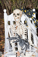 Life-sized skeletons are dressed up for Halloween decorations along Hillcrest Road in Belmont, Massachusetts, USA, on Mon., Oct. 30, 2017. A resident said the neighborhood has been doing similar coordinated decorations along the road for the previous 3 or 4 years.  In this image, the skeleton is covered in cobwebs and sitting in a chair.