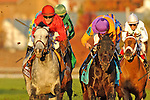 Robby Albarado aboard Court Vision (Purple Cap; Center)  Wins The Breeders' Cup Mile (Grade 1) at Churchill Downs in Louisville, KY  on 11/05/11. (Ryan Lasek / Eclipse Sportwire)