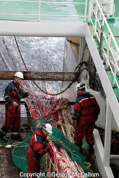 Deckhands overseeing trawl net being wound in during a pelagic trawl for herring in Barents sea