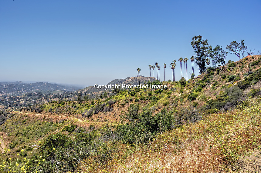 The view of Mount Hollywood from Griffith Park trails, Hollywood, CA.