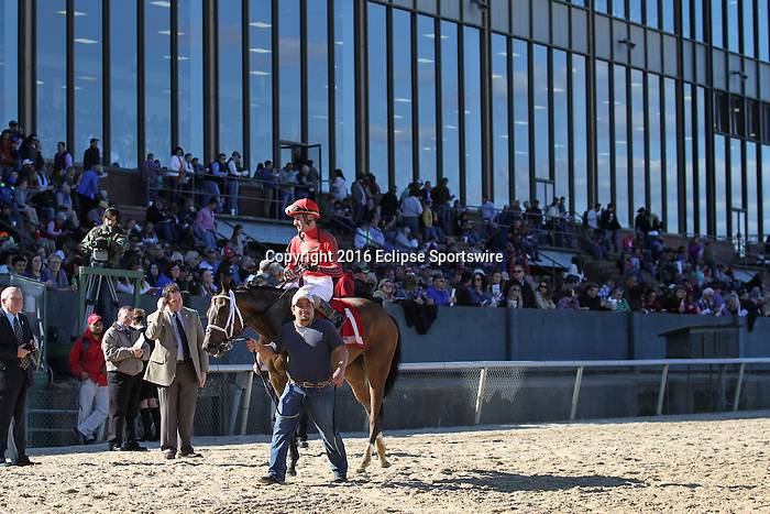 HOT SPRINGS, AR - MARCH 19:  Call Pat #1 with Joseph Rocco, Jr. aboard is walked as she prepares to enter the winner's circle after the Azeri Stakes at Oaklawn Park on March 19, 2016 in Hot Springs, AR. (Photo by Ciara Bowen/Eclipse Sportswire/Getty Images)