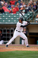 Rochester Red Wings Luis Arraez (9) bats during an International League game against the Charlotte Knights on June 16, 2019 at Frontier Field in Rochester, New York.  Rochester defeated Charlotte 3-2 in the second game of a doubleheader.  (Mike Janes/Four Seam Images)