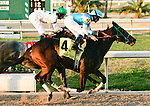Feb 2010:   Stonehouse and Miguel Mena win the Mineshaft Handicap at the Fairgrounds in New Orleans, La.