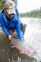 Fly angler holds a female steelhead (Oncorhynchus mykiss), Skeena River, British Columbia, Canada.