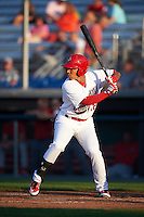 Auburn Doubledays designated hitter Oliver Ortiz (18) at bat during a game against the Williamsport Crosscutters on June 25, 2016 at Falcon Park in Auburn, New York.  Auburn defeated Williamsport 5-4.  (Mike Janes/Four Seam Images)