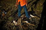 Archive: Deer Hunt