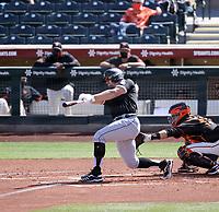 Adam Engel - Chicago White Sox 2021 spring training (Bill Mitchell)